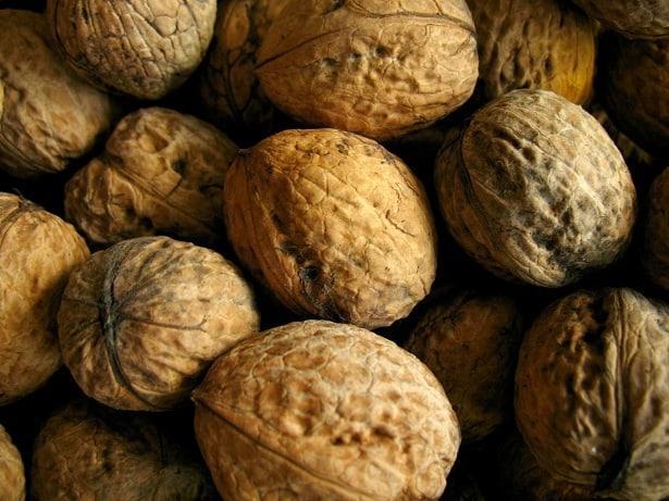 La noix de Grenoble – Une noix aux qualités diététiques